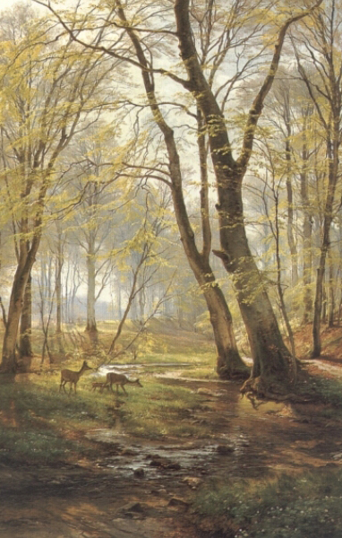 Woodland Scene With Deer