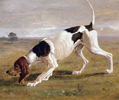 A Pointer in a Landscape