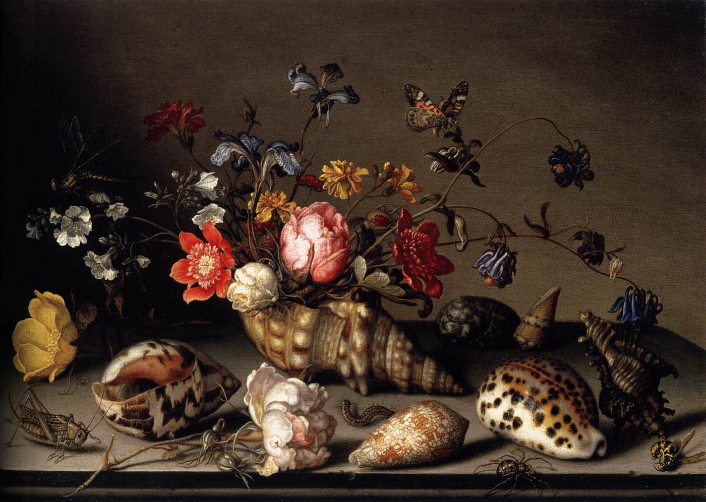 Still Life of Flowers, Shells, and Insects 1635