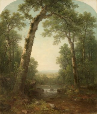 Asher-Brown-Durand-xx-Forest-Stream-with-Vista