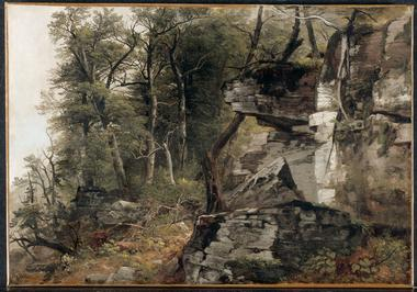Trees on a Rocky Hillside