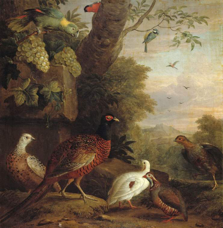 Birds in a landscape