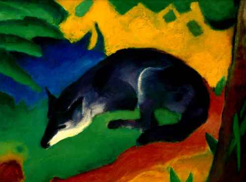 Blue-Black Fox
