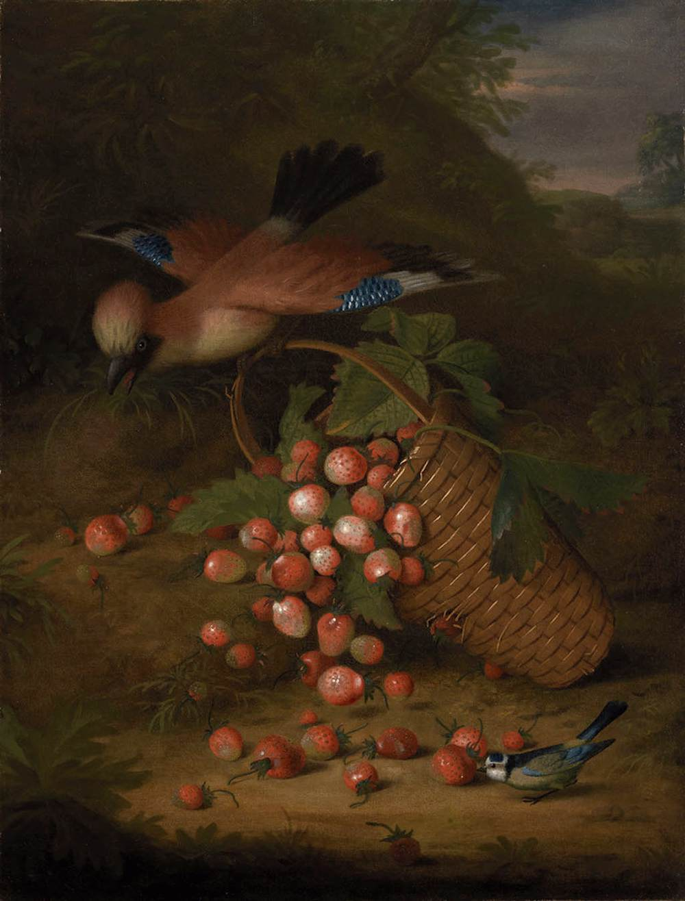 A Jay with a Basket of Strawberries