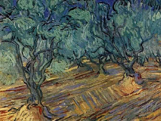 Olive Grove Blue